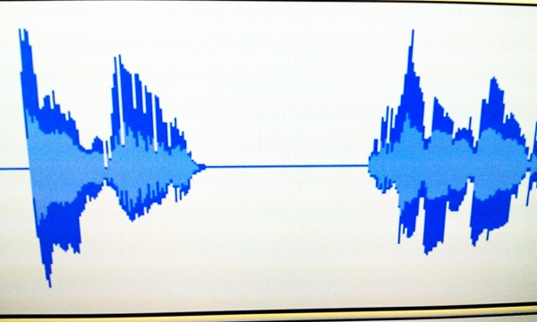 Silence in Audacity waveform