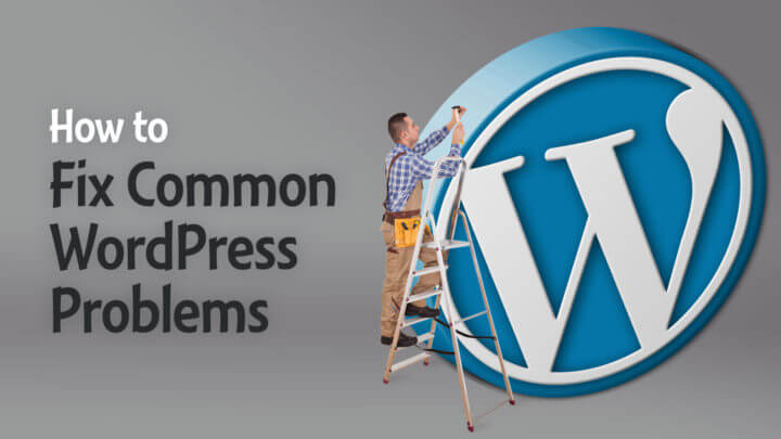 How-to-Fix-Common-WordPress-Problems-Wide